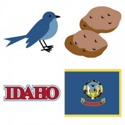 Idaho Gem State - CS