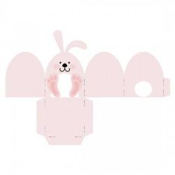 Bunny Box - CS