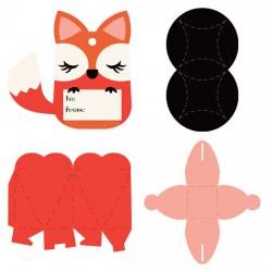 Foxy Boxies - CP
