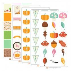 Little Pumpkin Collection