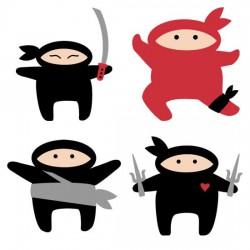 Ninja Kicks - CS