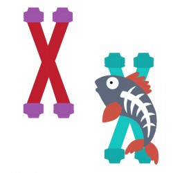 Animal Alphabet X - CP