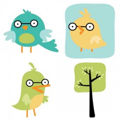 Bug-eyed - Birds - CS