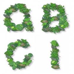 Leafy - AL