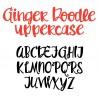 ZP Ginger Doodle - FN -  - Sample 2