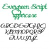 PN Evergreen Script - FN -  - Sample 2