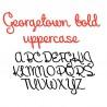 PN Georgetown Bold - FN -  - Sample 2