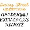 ZP Daisy Street - FN -  - Sample 3