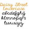 ZP Daisy Street - FN -  - Sample 4