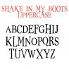 PN Shake in My Boots - FN -  - Sample 2