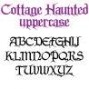 LD Cottage Haunted - FN -  - Sample 2