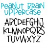 PN Peanut Brain - FN -  - Sample 2