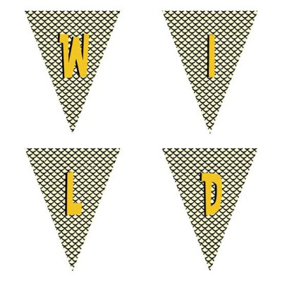 Wild One - Pennants - PR