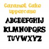 ZP Caramel Cake - FN -  - Sample 2