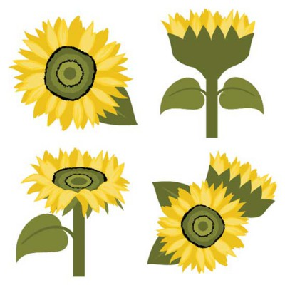 Sunflowers - CS