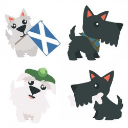 A Wee Bit Scottish - Terrier - GS