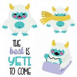 Yeti or Not - CS