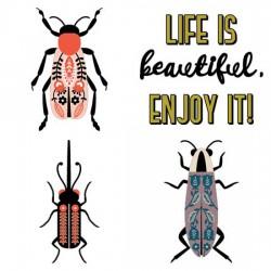 Brilliance - Beetles - CS