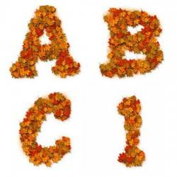 Leaf Pile - AL