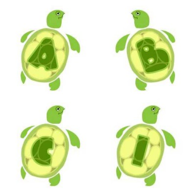 Tiny Turtles - AL