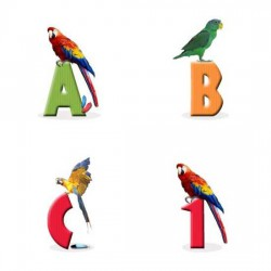 JDA Exotic Birds - AL