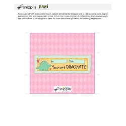 Dinomite - Candy Bar Wrapper - PR