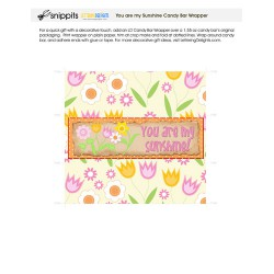 You Are My Sunshine - Candy Bar Wrapper - PR