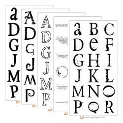 LD Roman Font Bundle