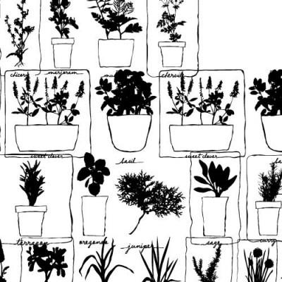 DB Herb Garden - DB