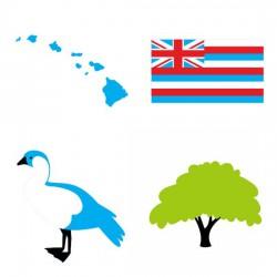 Hawaii Aloha State - SV