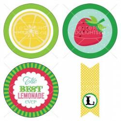 Strawberry Lemonade Stand Kit - PR