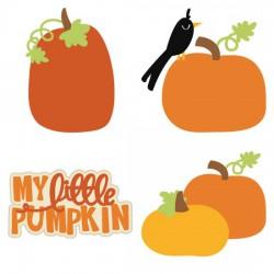 Pumpkin Patch - CS