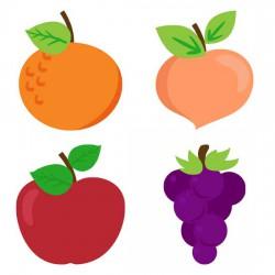Tutti Frutti - GS