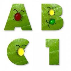 Bugs - AL