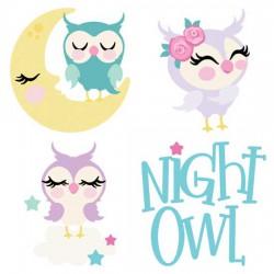 Night Owls - CS