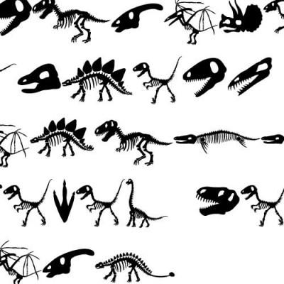 DB Dinosaur Fossils - DB