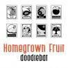 DB Homegrown - Fruit - DB -  - Sample 1