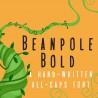 PN Beanpole Bold - FN -  - Sample 2