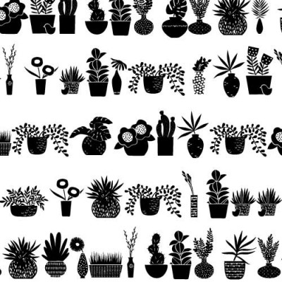 DB - Panorama - Plants - DB