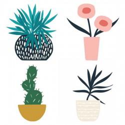 Panorama - Plants - CS
