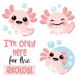 Happy Axolotl - CS