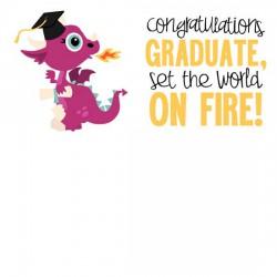Little Dragons - Graduate - GS