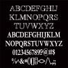 PN Bloomer Monogram - FN -  - Sample 3