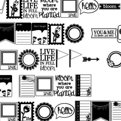 DB Bloomies - Notes - DB