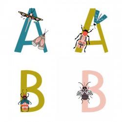 Brilliance - AL