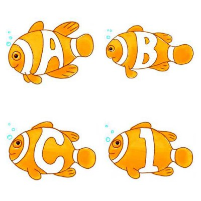 Clown Fish - AL