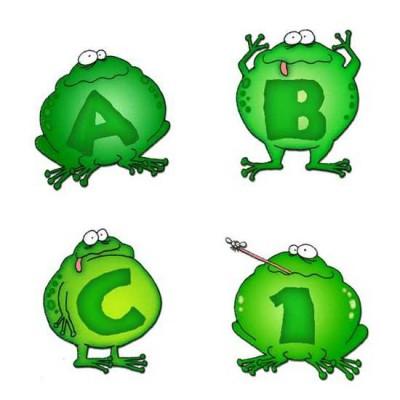 Señor Frog - AL