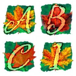 Fall Colors - AL