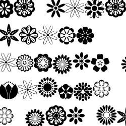 DB Floral Infusion - DB